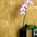 Corcho decorativo paredes